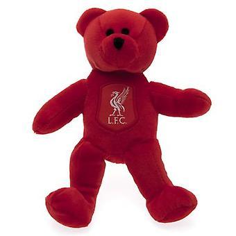 Liverpool Mini Bjørn