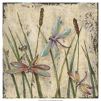 Dancing Dragonflies I Poster Print by Jade Reynolds (19 x 19)