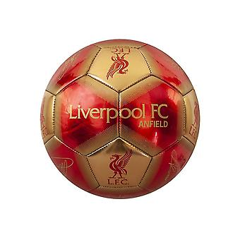 Liverpool FC Signature Skill Ball