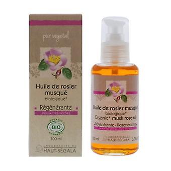 Organic virgin musk rose oil 100 ml
