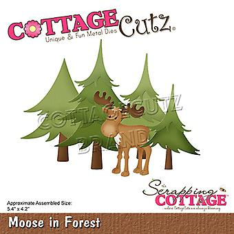 Scrapping Cottage Moose In Forest