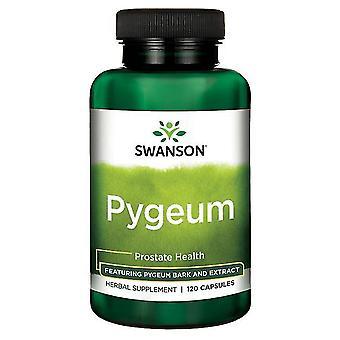 Swanson-pygeum Prostata-Gesundheit