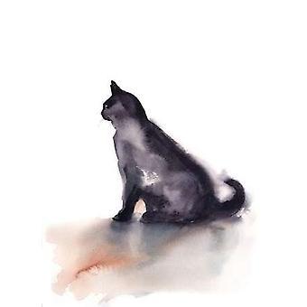 Sort kat plakat Print af Sophia Rodionov
