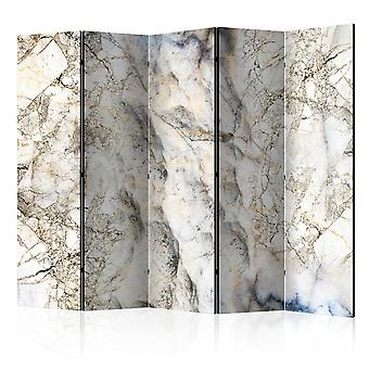Paravent 5 volets - Marble Mystery II [Room Dividers]