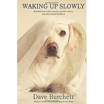 Vågne op langsomt: Åndelige erfaringer fra min hund, mine børn, Critters og andre uventede steder
