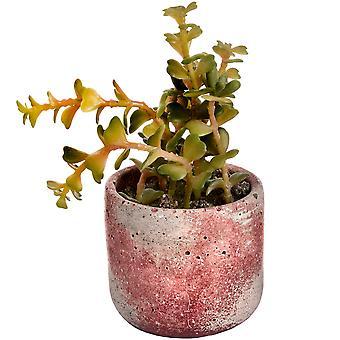 Hill Interiors Faux Potted Succulent Plant