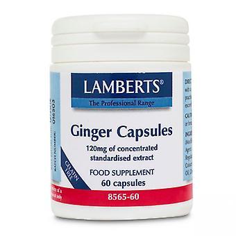 Lamberts Ginger Capsules 60 (8565-60)