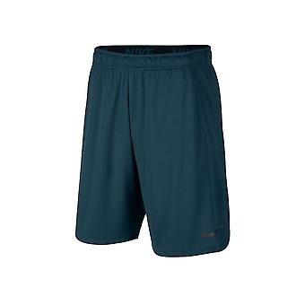 Nike Dry 40 Training 890811304 training all year men trousers