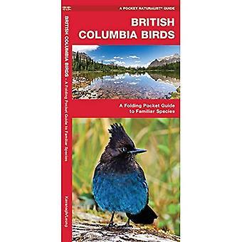 British Columbia Birds (Pocket Naturalist)
