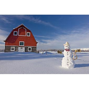 Snowman Dressed Up As A Cowboy Standing In Front Of A Vintage Red Barn In WinterPalmer Alaska Usa PosterPrint