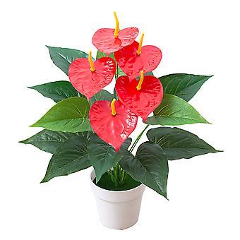 Simulación Anthurium (8 hojas grandes, 5 hojas pequeñas, 5 cabezas de flores)