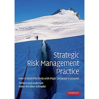 Strategic Risk Management Practice - How to Deal Effectively with Majo
