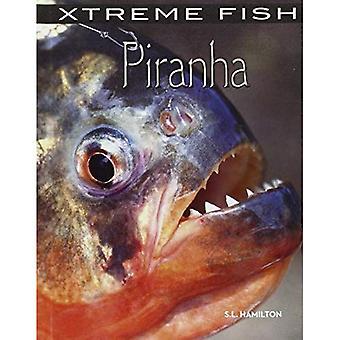 Piraija (Xtreme kala)