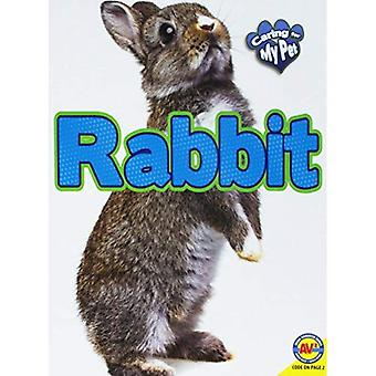 Rabbit (Caring for My Pet)