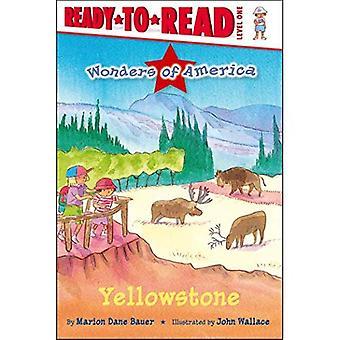 Yellowstone (pronto-a-Leia-nível 1 (qualidade))