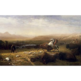 Last of the Buffalo,Albert Bierstadt,60x37cm