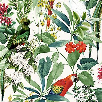Ikala Tropical Wallpaper Multi Muriva L76204