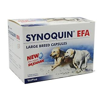 Synoquin EFA Capsules for Large Dogs Over 25 kg (50 lbs) - 120 Pack