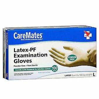 Caremates examination gloves, large, 100 ea