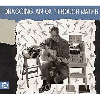 Dragging an Ox Through Water - Panic Sentry [CD] USA import