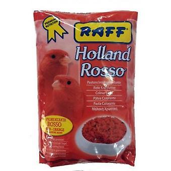Raff Holland Rosso (Birds , Hand Rearing)