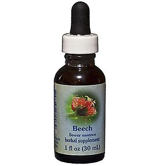 Flower Essence Tjänster Beech Dropper, 1 oz