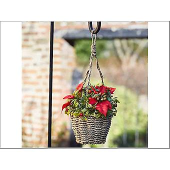 Smart Solar Basket Bouquet Poinsettia 2540001