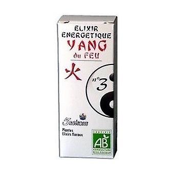 Elixir 03 Yang of Fire (Angelica) 50 ml
