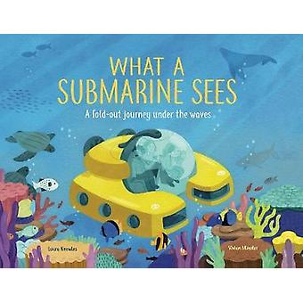 What a Submarine Sees A foldout journey under the waves