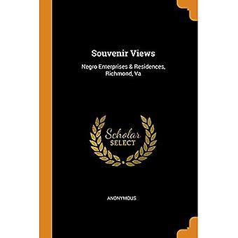 Souvenir Views: Negro Enterprises & Residences, Richmond, Va