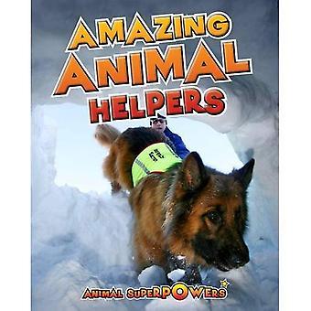 Amazing Animal Helpers (Animal Superpowers)
