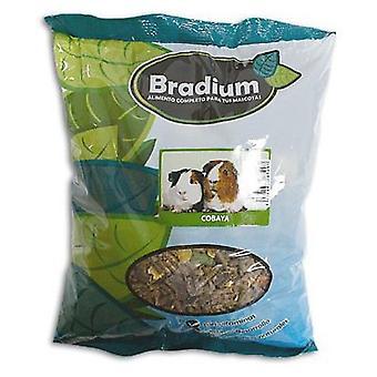 Bradium Bradium Mixtura Cobayas 3'5Kg (Large) (Small pets , Dry Food and Mixtures)