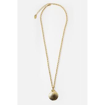 Orelia Jewellery Statement Shell Chunky Chain Necklace