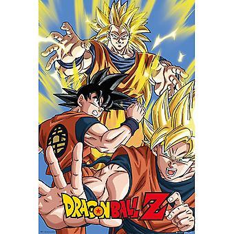 Dragon Ball Z Goku Maxi Juliste