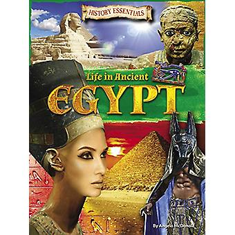 Life In Ancient Egypt by Angela McDonald - 9781788560399 Book