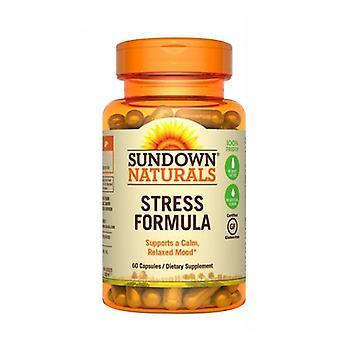 Sundown Naturals L-Theanin Stress Formel, 12 X 60 Kepsar
