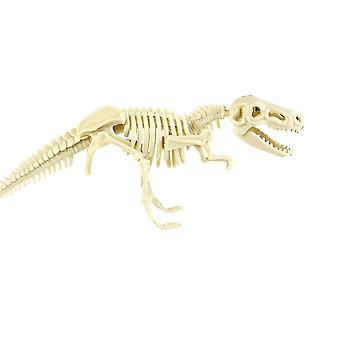 Dinosaurusten kaivauspakkaukset dinosaurusten luilla, hampailla jne.