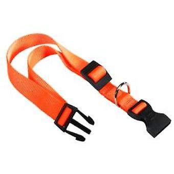 Ferplast Nylonhalsband C20 / 56 Club (Hunde , Für den Spaziergang , Halsbänder)