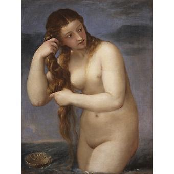 Venus Anadyomenes, Titian, 50x40cm