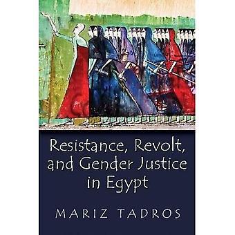 Oporu, buntu i płci sprawiedliwości w Egipcie (płeć, kultury i polityki na Bliskim Wschodzie)