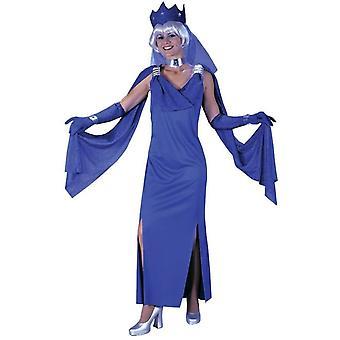 Blauwe Meesteres volwassen kostuum