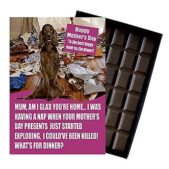Irsk rød setter ejer hund elsker mors dag gave chokolade til stede for mor