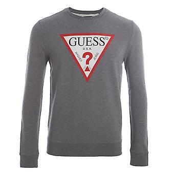 Guess Kelvin CN Fleece grau T-shirt