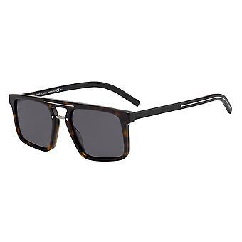 Dior Homme Blacktie262S 086/2K Dark Havana/grå