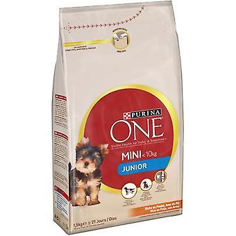 Pro Plan Pienso Mini Dog Junior (Dogs , Dog Food , Dry Food)