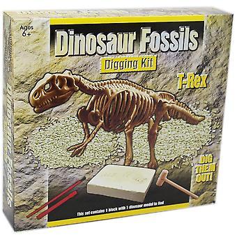 Karussell graben Dinosaurier Skelett Fossil Paläontologie Archäologie Ausgrabung Kit für Kinder