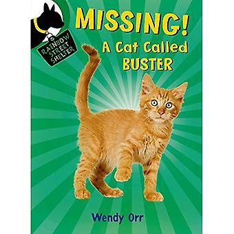 Manca! un gatto chiamato Buster (Rainbow Street riparo)