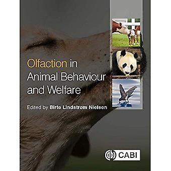 Luktsinnets funktion i djurs beteende och välfärd
