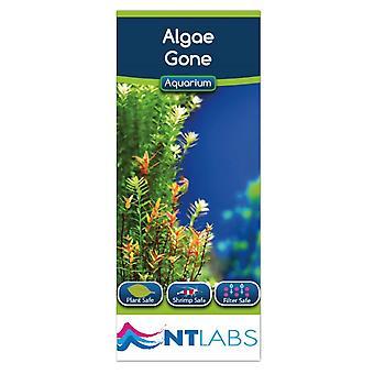 NT Labs Aquarium Algae Gone 100ml