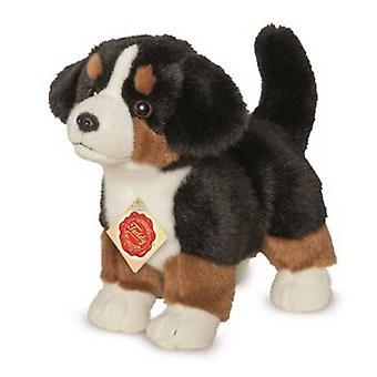 Hermann Teddy Bernese Mountain Dog 23 cm